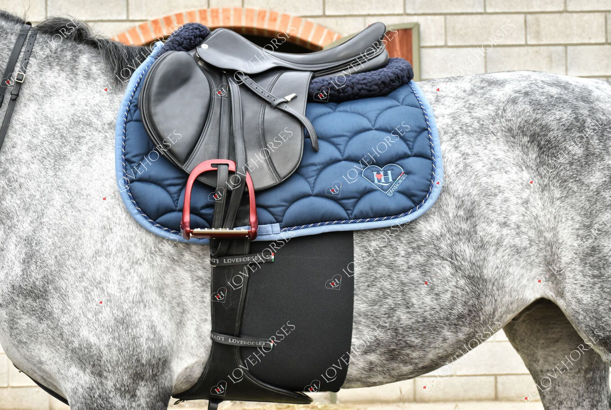 "Love Horses Sporenschutzgurt FULL CONTACT ""BASIC"" - NEU"